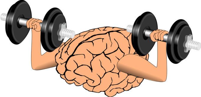 cerebro-fortalecimiento